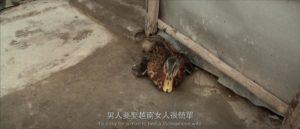 《阿紫》被綁腳的鴨子